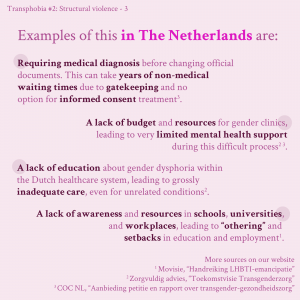 Fourth slide in infographic series about structural transphobic violence